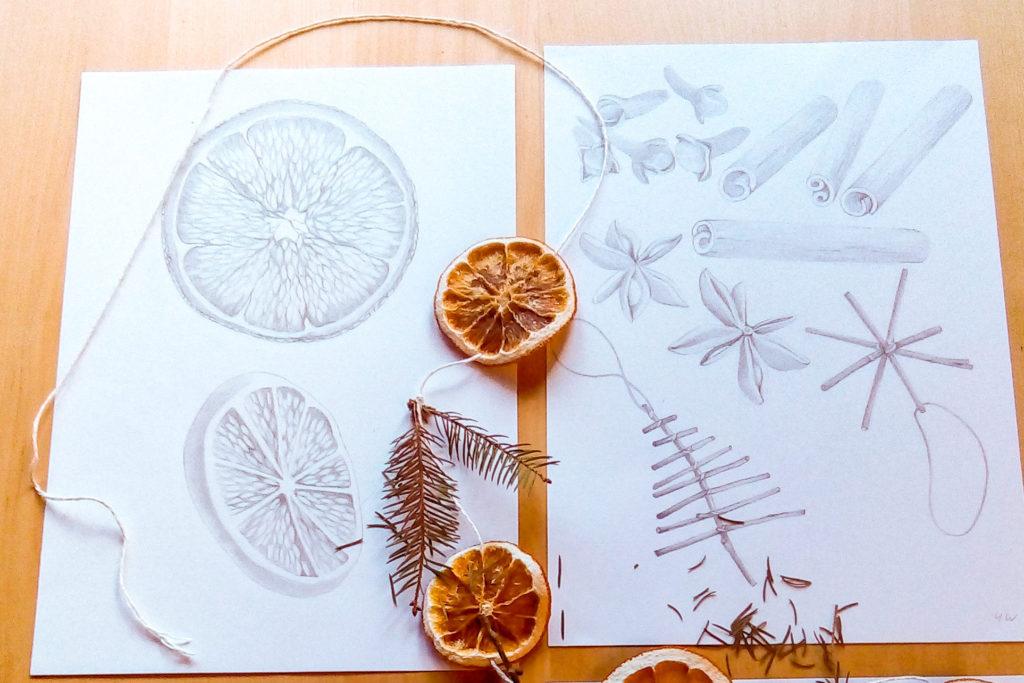 Celebration natural ingredients drawings