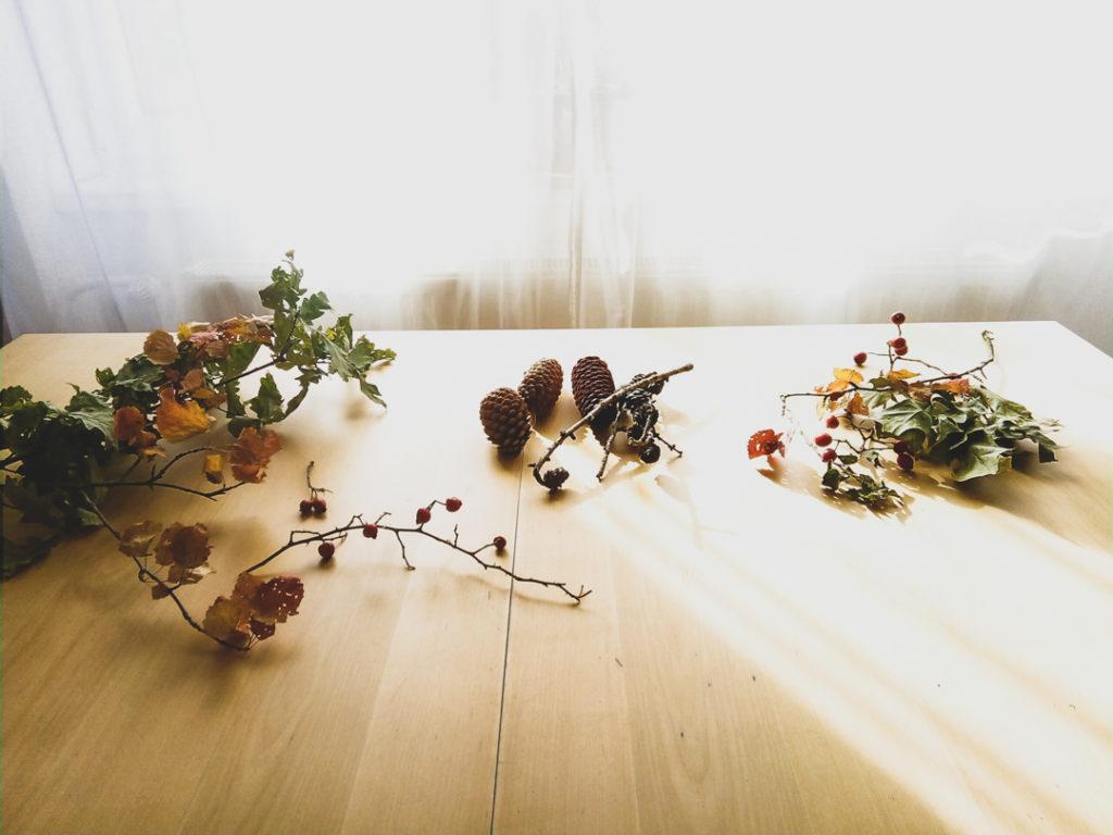 Autumn botanicals